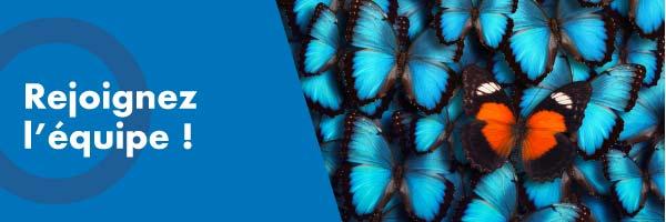 recrut-papillon-600-200