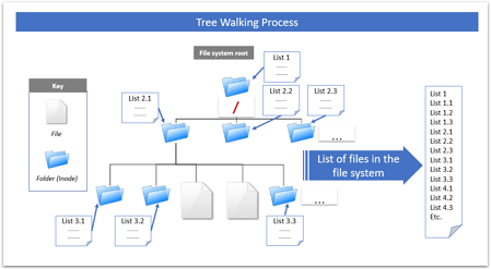tree-walk-en