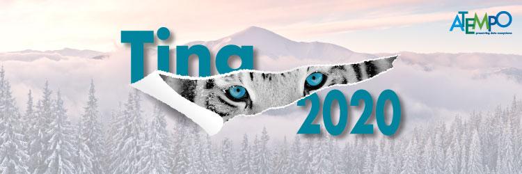 Tina 2020